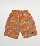 <img class='new_mark_img1' src='https://img.shop-pro.jp/img/new/icons8.gif' style='border:none;display:inline;margin:0px;padding:0px;width:auto;' />ROLLERS ALOHA EASY SHORTS(ローラーズ)