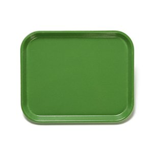 [CAMBRO]Camtray/M/green