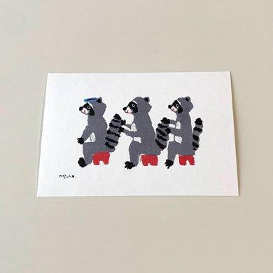 ミズノマサミ  ポストカード アライグマ