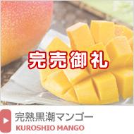 完熟黒潮マンゴー(アップルマンゴー)