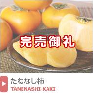 平たねなし柿(平核無柿)