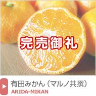有田みかん(晩生・マルノ共撰)