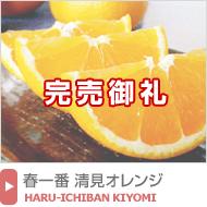春一番清見オレンジ
