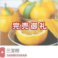 三宝柑(さんぼうかん)