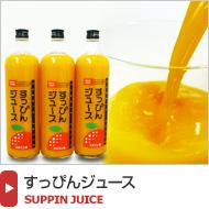 和歌山みかんの無添加ジュース【すっぴんジュース】