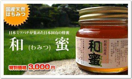 <img class='new_mark_img1' src='https://img.shop-pro.jp/img/new/icons51.gif' style='border:none;display:inline;margin:0px;padding:0px;width:auto;' />【和蜜(わみつ)】日本蜜蜂が集めた【幻のハチミツ】《300g》