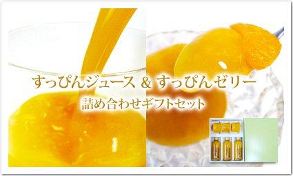 【すっぴんジュース&すっぴんゼリー】《詰め合わせギフトセット》