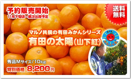 <img class='new_mark_img1' src='//img.shop-pro.jp/img/new/icons51.gif' style='border:none;display:inline;margin:0px;padding:0px;width:auto;' />《秀品》【山下紅みかん】マルノ共撰の有田みかん【有田の太陽】《Mサイズ/10kg》【送料無料】