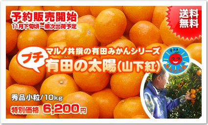 <img class='new_mark_img1' src='//img.shop-pro.jp/img/new/icons51.gif' style='border:none;display:inline;margin:0px;padding:0px;width:auto;' />《秀品》【プチ山下紅みかん】マルノ共撰の有田みかん【有田の太陽】《2Sサイズ/10kg》【送料無料】