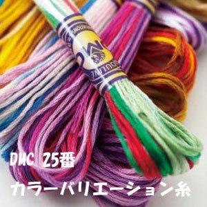 DMC カラーバリエーション糸 25番