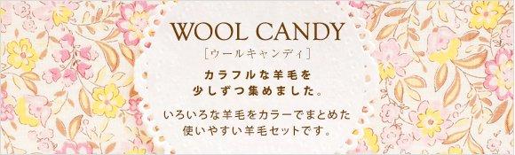 ハマナカ羊毛 ウールキャンディ 4色 ダークグレイッシュ H441-120-5 【参考画像6】