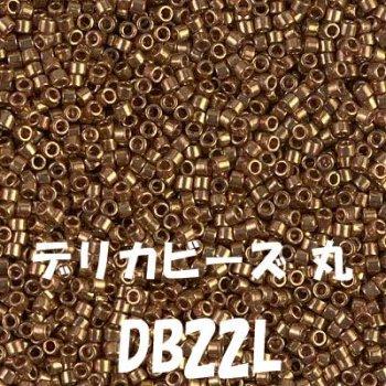 デリカビーズ DB22L 20g