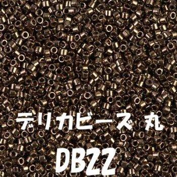 デリカビーズ DB22 20g