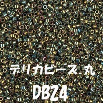 デリカビーズ DB24 20g