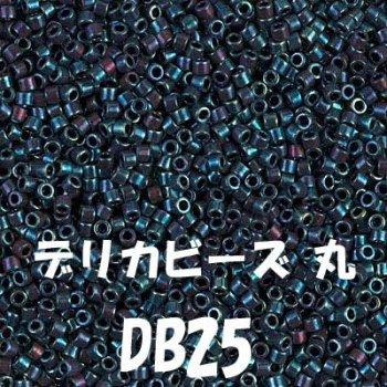 デリカビーズ DB25 20g