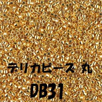 デリカビーズ DB31 20g