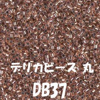 デリカビーズ DB37 20g ガラス スキ、ツヤ有り