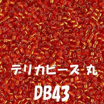 デリカビーズ DB43 20g