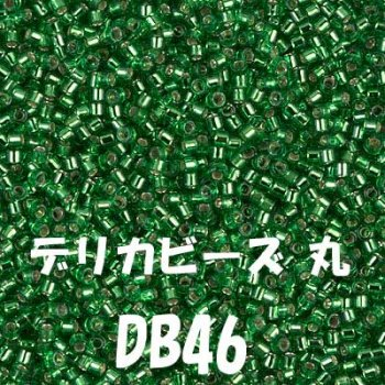 デリカビーズ DB46 20g