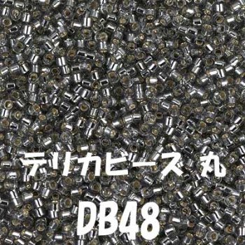 デリカビーズ DB48 20g