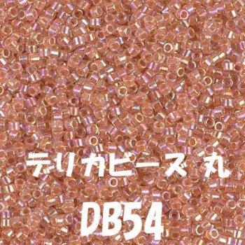 デリカビーズ 20g DB54