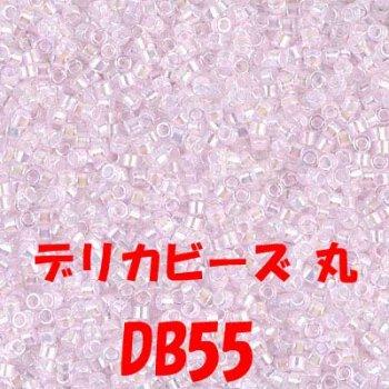 デリカビーズ 20g DB55