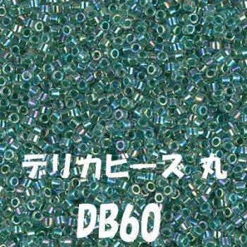 デリカビーズ 20g DB60