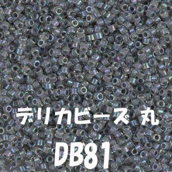 デリカビーズ 20g DB81