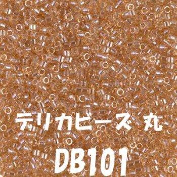 ミユキ デリカビーズ 20g DB101