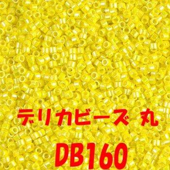 ミユキ デリカビーズ 20g DB160