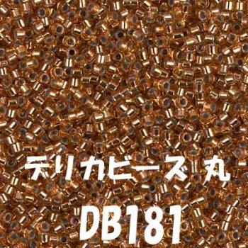 ミユキ デリカビーズ 20g DB181