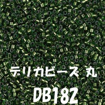 ミユキ デリカビーズ 20g DB182