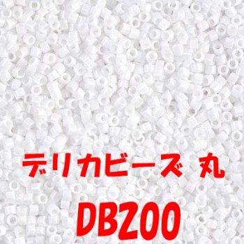 MIYUKI デリカビーズ 20g DB200