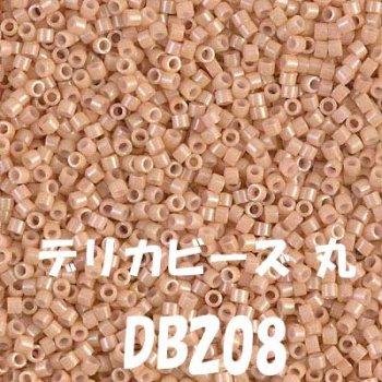 MIYUKI デリカビーズ 20g DB208
