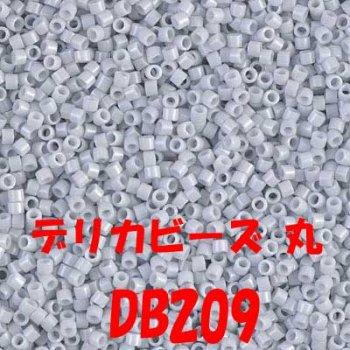 MIYUKI デリカビーズ 20g DB209