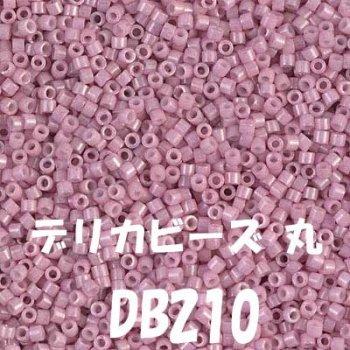 MIYUKI デリカビーズ 20g DB210