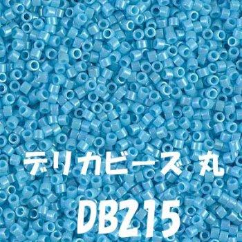 MIYUKI デリカビーズ 20g DB215