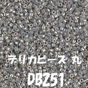 MIYUKI デリカビーズ 20g DB251 ガラス ツヤ有り