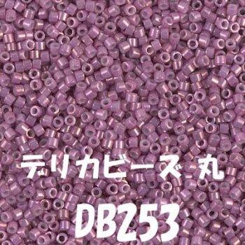 MIYUKI デリカビーズ 20g DB253