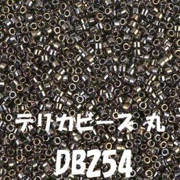 MIYUKI デリカビーズ 20g DB254