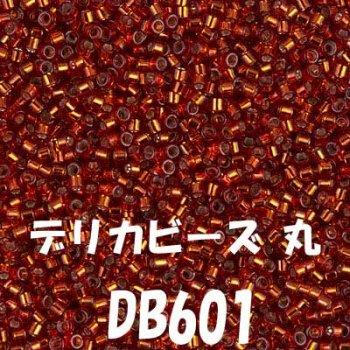 デリカビーズ 丸 20g DB601