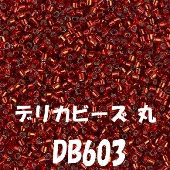 デリカビーズ 丸 20g DB603