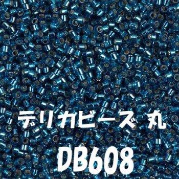 デリカビーズ 丸 20g DB608