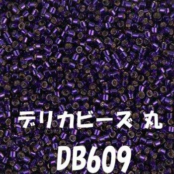 デリカビーズ 丸 20g DB609
