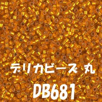 デリカビーズ 丸 20g DB681
