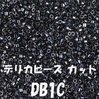 デリカビーズ DB1C 20g