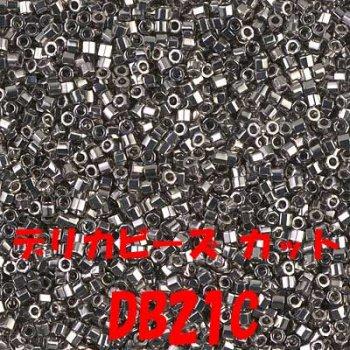 デリカビーズ DB21C 20g