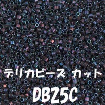 デリカビーズ DB25C 20g