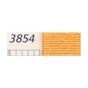 DMC刺繍糸 25番刺しゅう糸 3854
