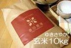 【玄米】令和2年産 北海道産 ゆきさやか 玄米10kg袋